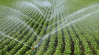 tarımsal sulama 1